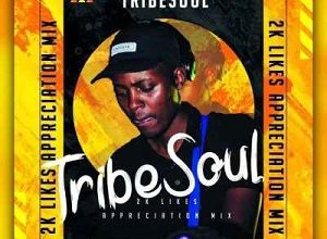 TribeSoul